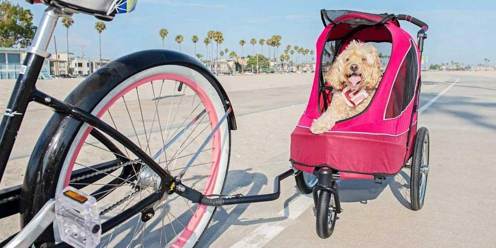 Hundebuggy Fahrradanhänger Petique All Terrain