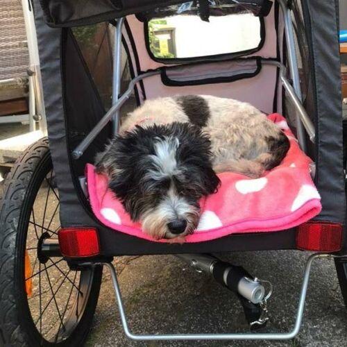 hundebuggy-trixie-kleiner-hund