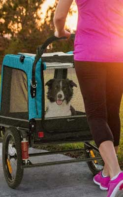 Klarfit Hundebuggy als Jogger