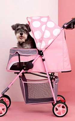 Rosa Hundebuggy gepunktet